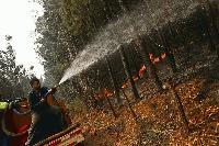 Пожарникари от Котел спасиха 250 декара широколистна гора