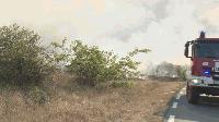 10 декара сливови насаждения изгоряха в сливенско