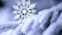 На 14 декември празнуват няколко красиви зимни имена