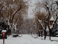 Пътищата в община Сливен са заснежени и проходими при зимни условия