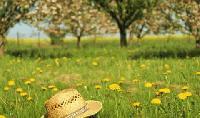 Климатолог с прогноза за времето през май