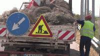 Демонтират предпазната мрежа за птици по магистралата край Ямбол