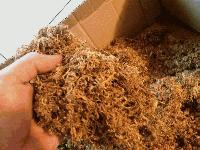 Иззеха половин кило безакцизен тютюн