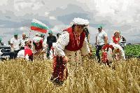 """Днес тържествено ще бъде открита жътвената кампания в община """"Тунджа"""""""