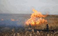 7 пожара в сливенско за денонощие