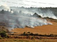 Стотици декари изгоряха край Елхово