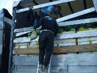 Нелегални имигранти са открити в камион с дини