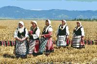 Министърът на земеделието Румен Порожанов откри жътвената кампания в сливенско