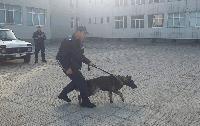 Ученици от Стралджа участваха в полицейско учебно занятие