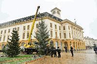 Коледната елха на Сливен пристигна