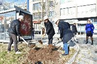 В Сливен въвеждат мерки за достъпност на спирките на градския транспорт