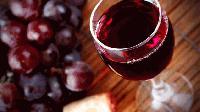 """Изложба """"Виното - вдъхновение или опиянение"""" организира регионалната библиотека в Сливен"""