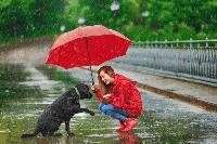 Дъжд и лошо време през уикенда - вижте къде ще вали най-много