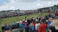 85 участника се включиха в турнира по борба в село Жельо войвода