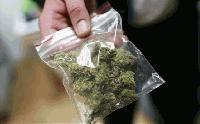 Задържаха двама за марихуана в Елхово