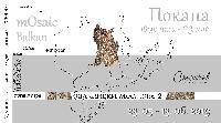 """Арт галерия """"СТОЙЧЕВ"""" представя Международна изложба мозайки  - """"Балкански мостове II"""