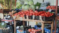Консултативните съвети по плодове и зеленчуци с първи заседания в Ямбол и Сливен