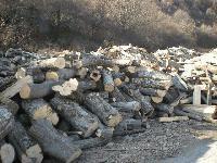 След август доставят дърва за огрев на бедните в община Тунджа