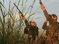 В събота откриват лова на пернат дивеч