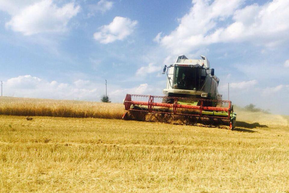 Ечемикът в област Ямбол се прибира средно на около 500 кг/дка, а пшеницата –на 550 кг/дка. Реколтата е по-добра и повече спрямо 2020 г., когато сушата...