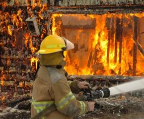 10 крави изгоряха при пожар в Пловдивско