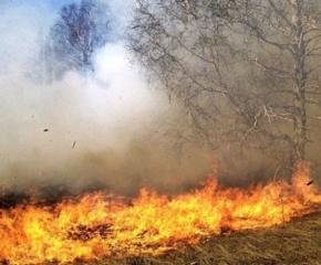 1200 дка изгоряха край Лесово