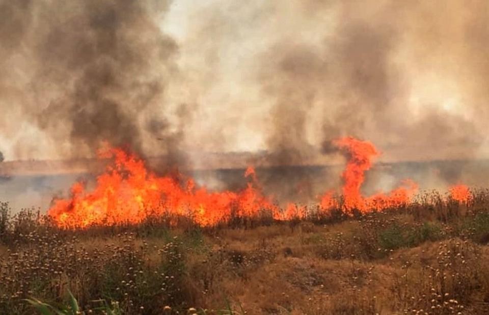 В Ямболска област по време на жътвената кампания са санкционирани 15 земеделски стопани за палене на стърнища и използване на неотговаряща на пожарната...