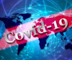 1594 общи случая на COVID-19 в България