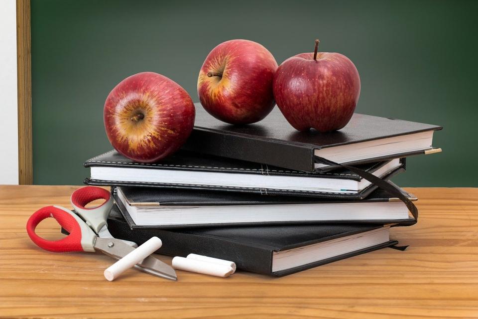 Шестнадесет са обявените в трудовата борса работни места за учители в област Ямбол към днешна дата, научи 999 от Агенцията по заетостта. Четири са обявите...