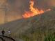 216 сигнала за пожари в страната през последното денонощие