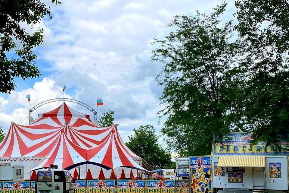 """По случай Деня на детето Община Ямбол ще подари на децата 600 билета за спектакъл на цирк """"Арена"""", чийто основател Свилен Кехайов е родом от Ямбол. Циркът..."""