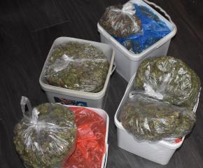 5 килограма марихуана са иззети при спецакция на криминалисти в Сливен