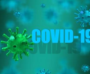 503 са потвърдените случаи на COVID-19