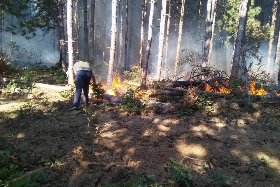 Над 150 души общо участват в борбата с огнената стихия между селата Планиново и Устрем. Сред тях са и 60 горски служители от Регионална дирекция по горите...