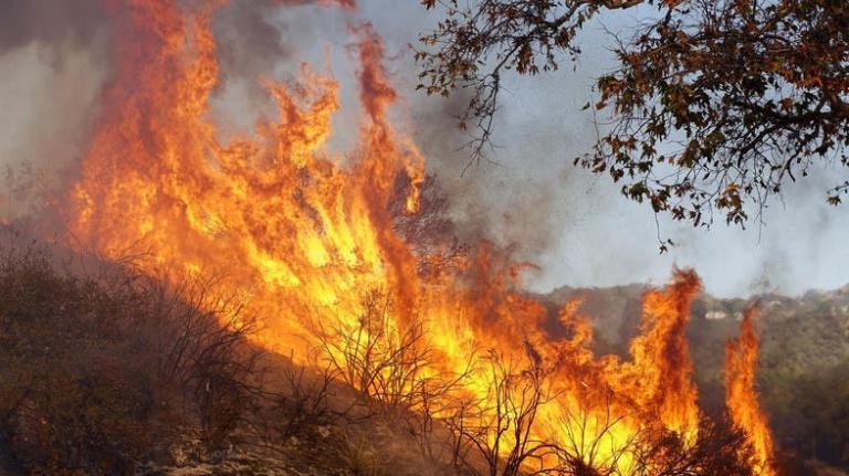 """През изминалото денонощие дежурните екипи на РД""""ПБЗН"""" - Ямбол са се отзовали на осем сигнала за възникнали пожари. В пет от случаите са горели сухи треви..."""