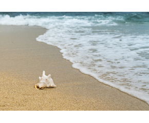 80% спад на чуждестранните туристи по Южното Черноморие