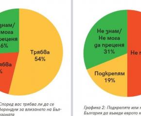 Анкета: 54% от българите искат референдум за приемането на еврото