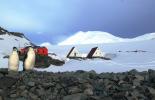 Антарктида е единственият континент без COVID-19