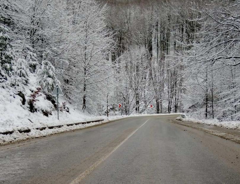 Над 350 машини са обработвали пътищата от републиканската пътна мрежа през нощта, за да се осигури безопасно пътуване на шофьорите при започналия снеговалеж....