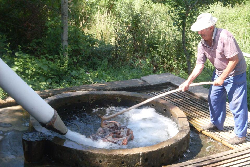 От 9 август до края на септември барата край град Болярово отново ще работи. Жителите на общината ще могат да ползват и тази година услугите й срещу...