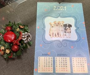 Благотворителен календар в помощ на Общинския приют за безстопанствени животни в Ямбол