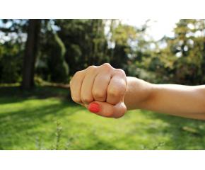 Бой между ученички в пазарджишко училище