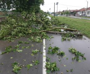 Буря начупи дървета и наводни пътища в област Ямбол