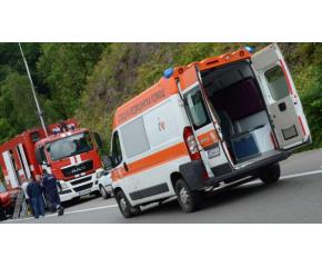 Бус се блъсна в кон на пътя и падна от мост. 7 души са в болница