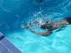 Българин се готви за рекорд, целта му е да преплува седем океански канала