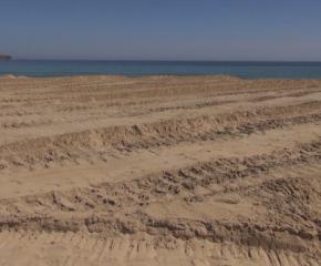 """Делото за разораните пясъчни дюни на """"Смокиня"""" влиза отново в съда"""