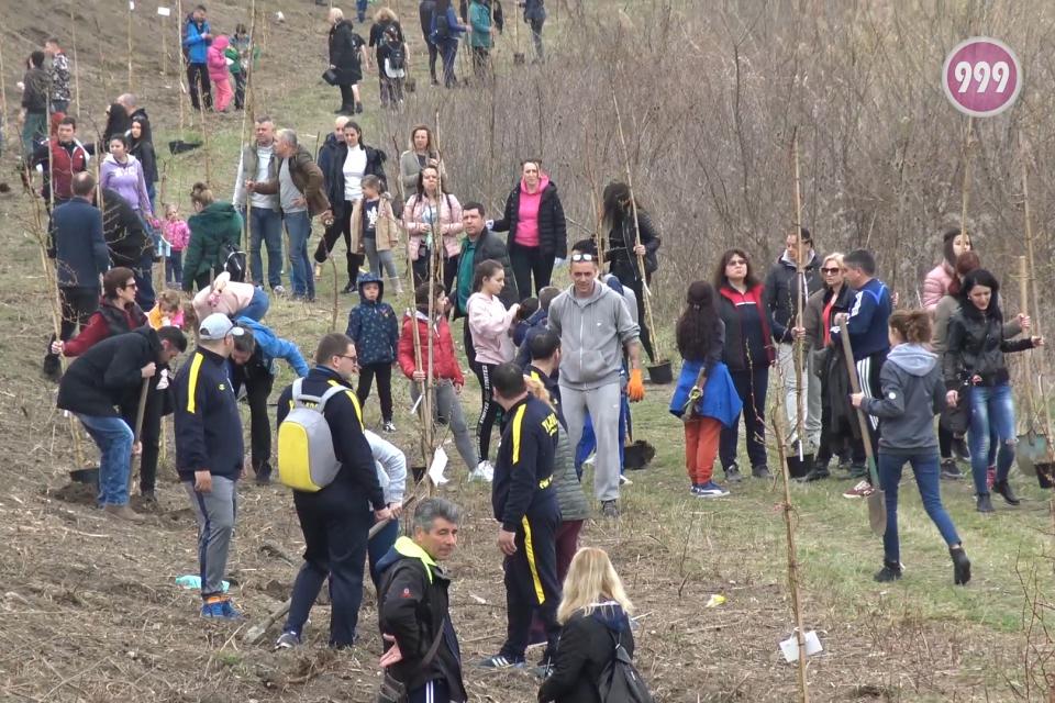 100 дръвчета бяха засадени край река Тунджа в неделната сутрин.  Инициативата е на група младежи от Ямбол и бе подкрепена от десетки жители на града.Успоредно...