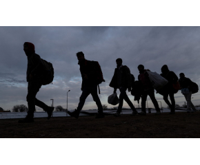 Десетки мигранти са открити в ловно стопанство над Ихтиман