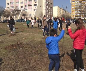 Деца, родители и учители засадиха своя мини гора (ВИДЕО)