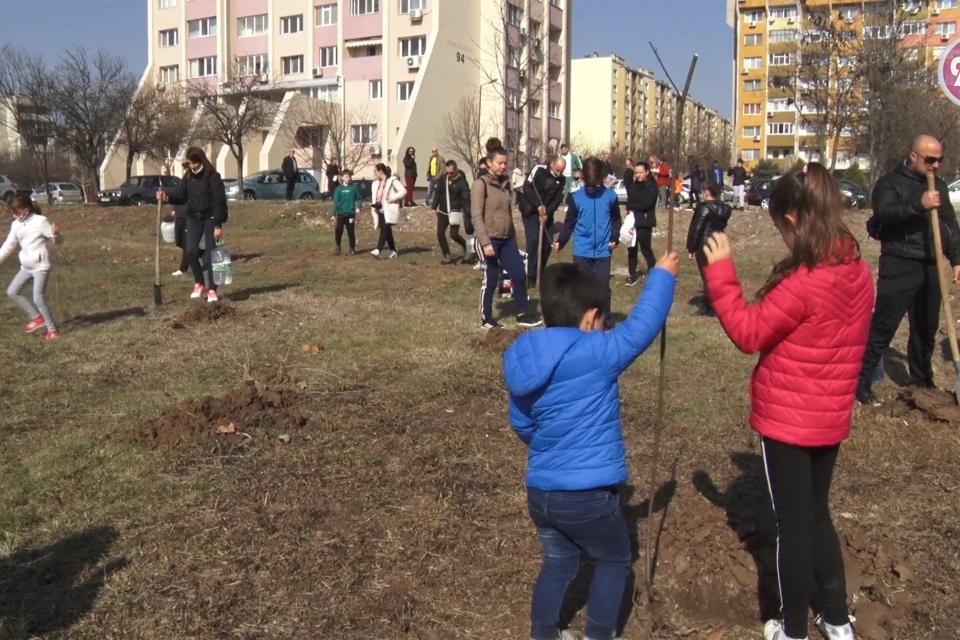 """Ученици, родители и учители засадиха дръвчета в Ямбол. Идеята е на децата, които се събраха в съботното утро в ямболския кв. """"Граф Игнатиев"""". Те са от..."""